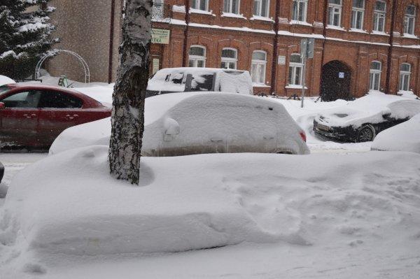 Новосибирск завалит снегом с середины недели