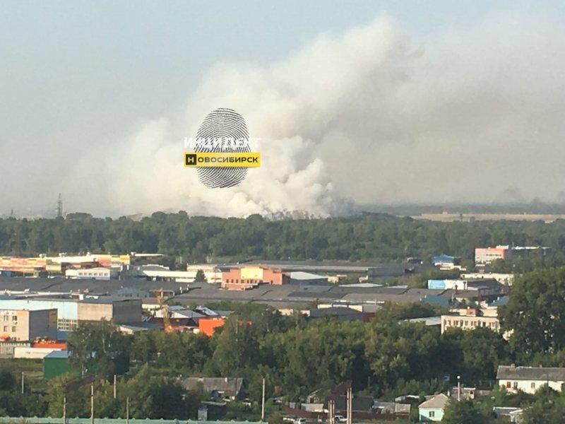 Новосибирск затянуло едким дымом от продолжающей гореть свалки