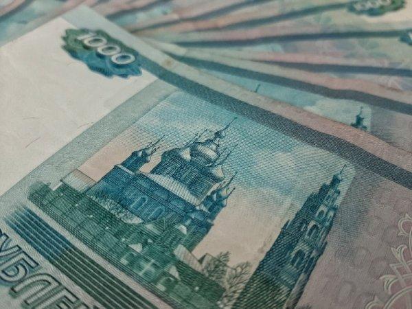Новосибирского коллектора оштрафовали за собственные долги