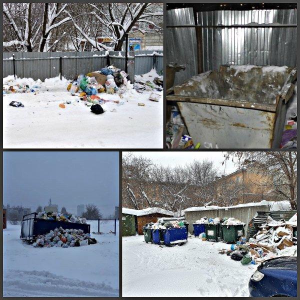 «Баки забрали, а мусор оставили»: Сибкрай.ru о вывозе мусора