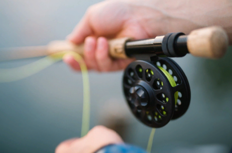 Лунный календарь рыболова 2021: в какие дни отличный клев обеспечен в мае