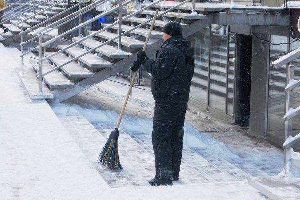 Поток мигрантов в Новосибирской области резко упал