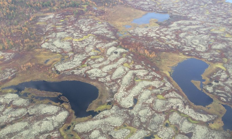 Ученые бьют тревогу: Метан из сибирских недр может похоронить все человечество