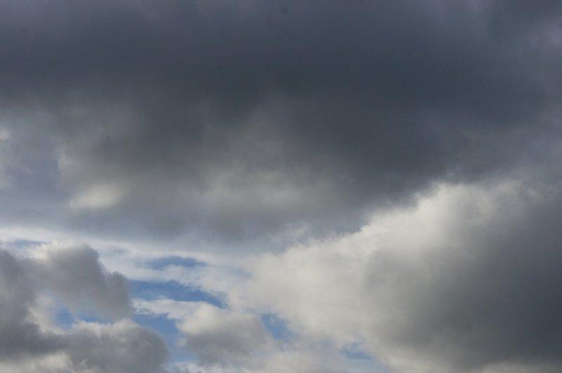 Синоптики пообещали новосибирцам выходные с дождем и градом