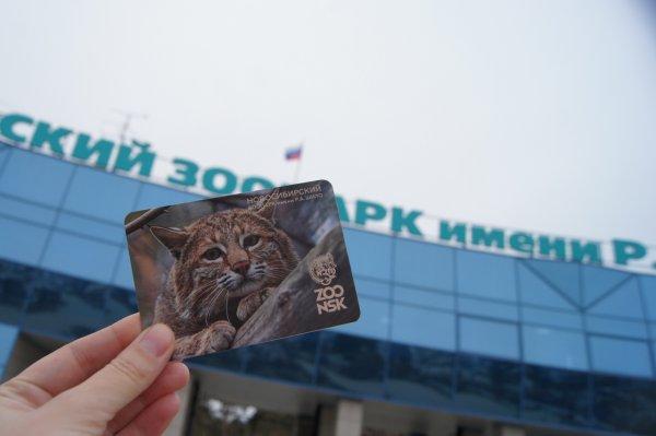 Новосибирский зоопарк подал в суд на мэрию
