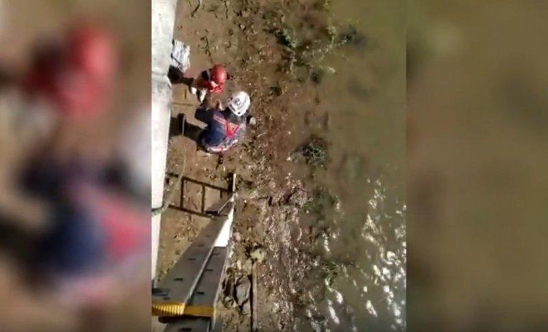 Ребенка унесло течением с набережной в Новосибирске (ВИДЕО)