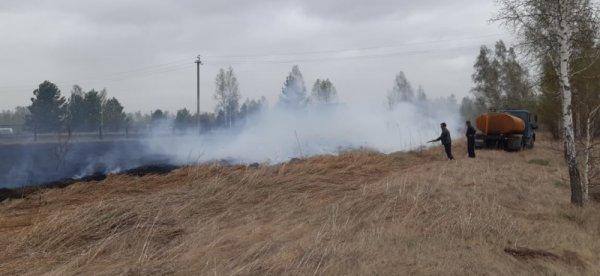 Новосибирские дачники и грибники устроили 13 пожаров за сутки