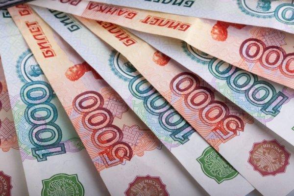 Многодетные семьи Новосибирской области получили свыше ста тысяч рублей выплат