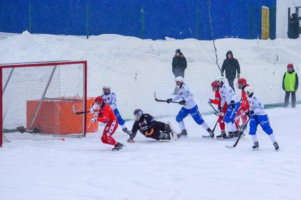 Хоккей с мячом: «Сибсельмаш» не нашел козырей против московского «Динамо»