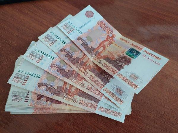 Новосибирская область не вошла в число регионов-лидеров по уровню зарплат в Сибири