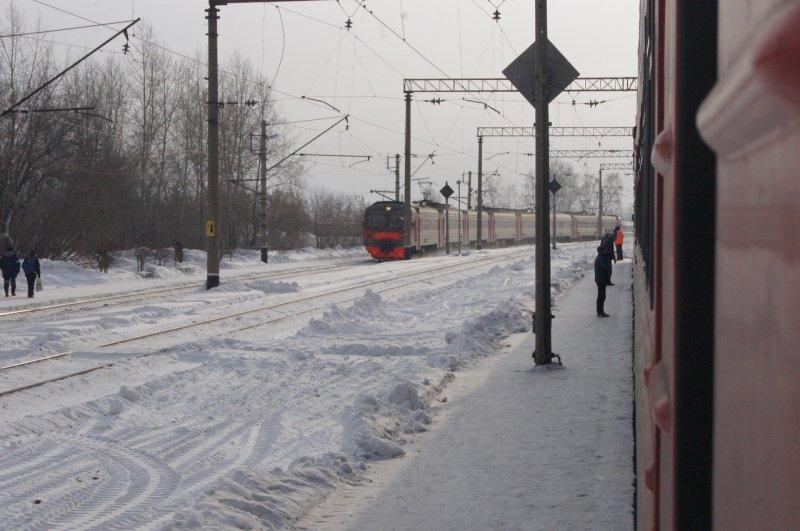 Помогите опознать: на станции «Обское море» под поезд попал мужчина с усами