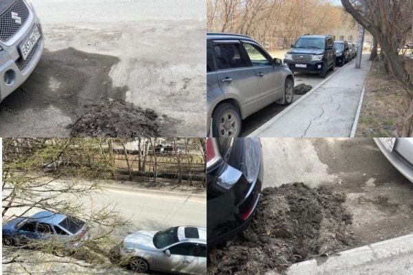 После публикации Сибкрай.ru очищать имя мэра на улицу Алейскую приехала армия дворников