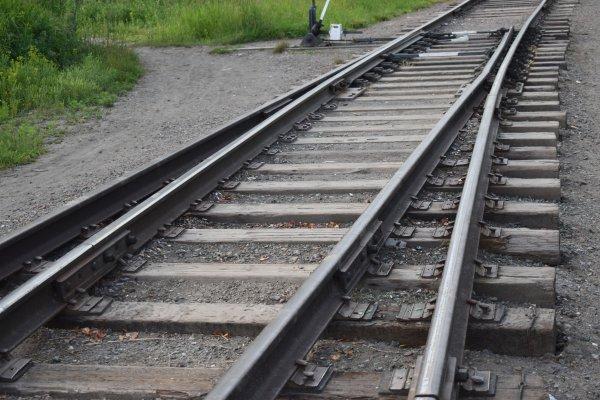 Жители Чановского района разобрали железную дорогу и пропили выручку