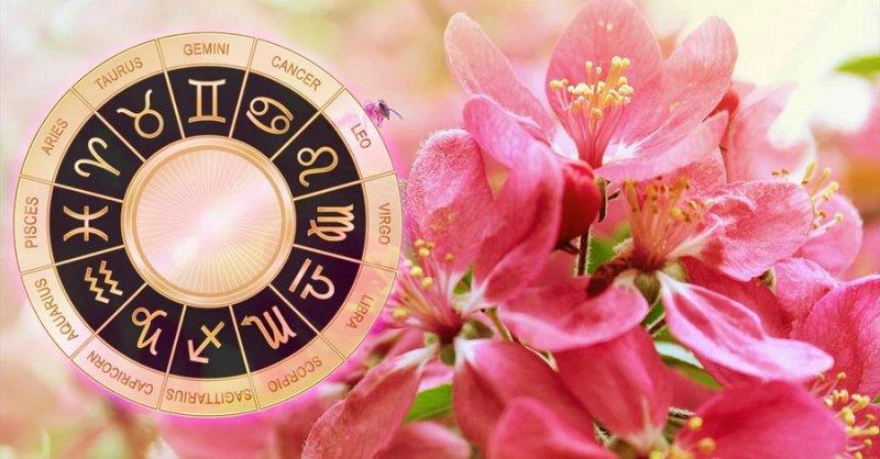 Гороскоп на 1 августа 2021 года для всех знаков зодиака: прогноз от астрологов