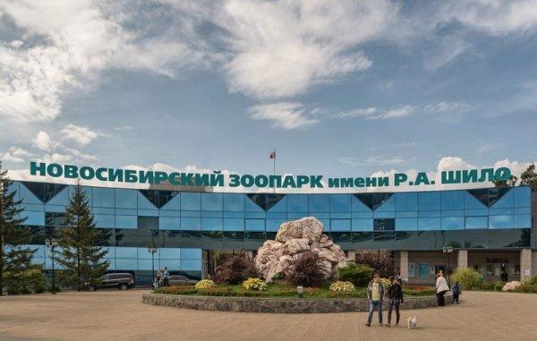 Новосибирский зоопарк поднимет цены на билеты