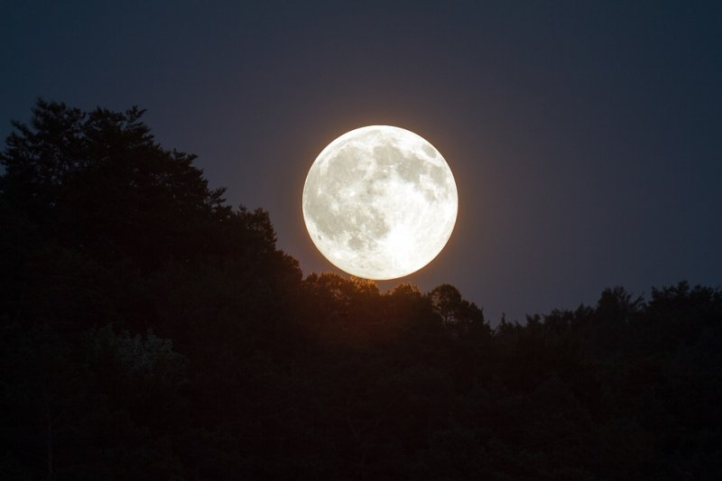 Медовое Полнолуние - 24 июля: как обратить силу Золотой Луны в свою пользу