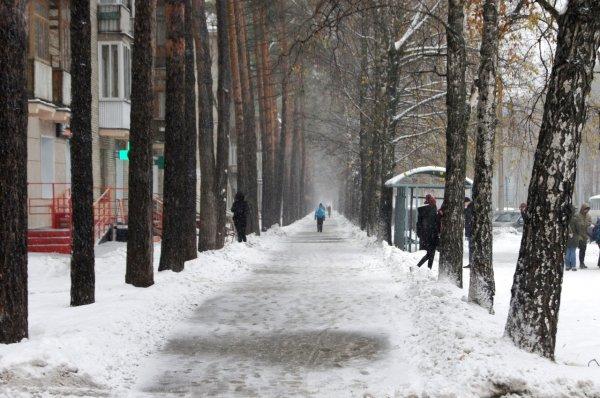 Погода зовет гулять: на выходных обещают относительное тепло