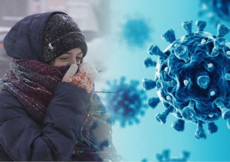 Ученые доказали: наступление морозов снизит распространение коронавируса