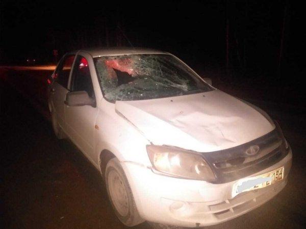 Пешеход погиб в ночной аварии на Дачном шоссе