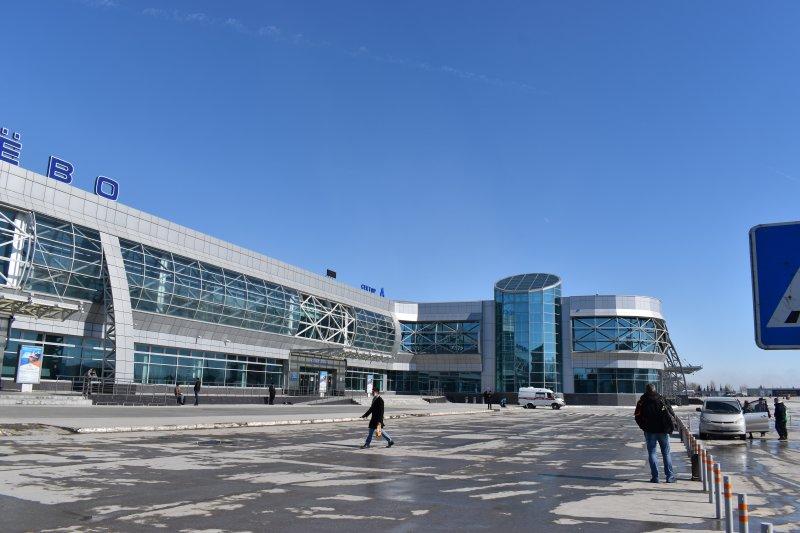 У прилетевших в Толмачево из-за рубежа пассажиров спросят тесты на COVID-19