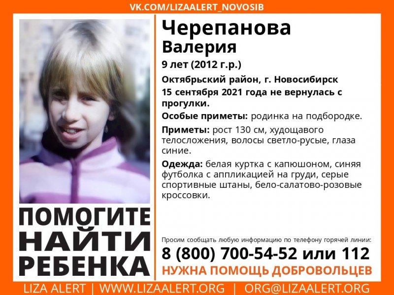 Девятилетняя девочка пропала после прогулки в Новосибирске