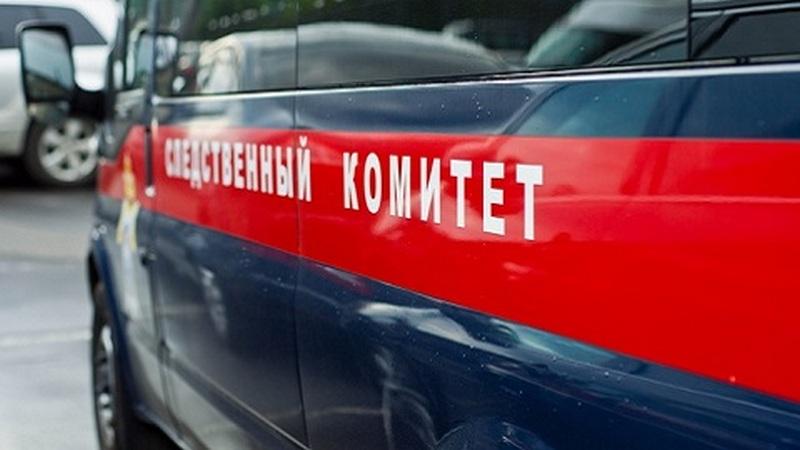 В Новосибирске возбудили уголовное дело за вовлечение малолеток в совершение особо тяжкого преступления