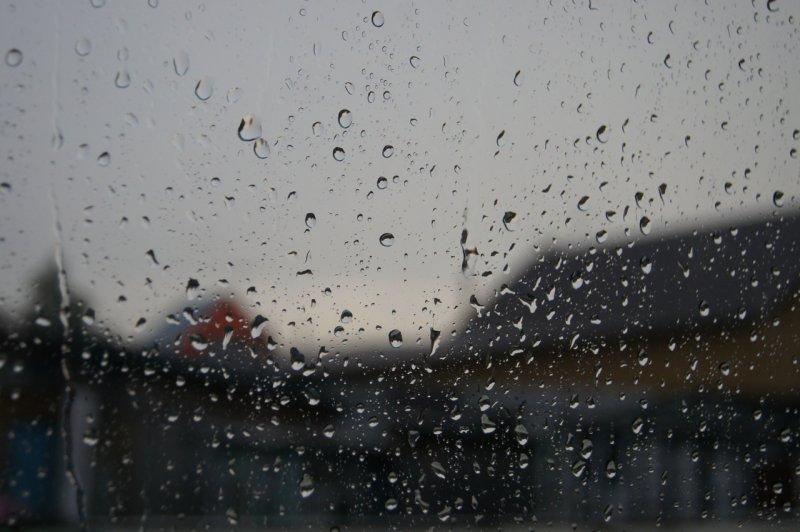 Достаем пальто: похолодание с грозами и сильным ветром идет в Новосибирскую область