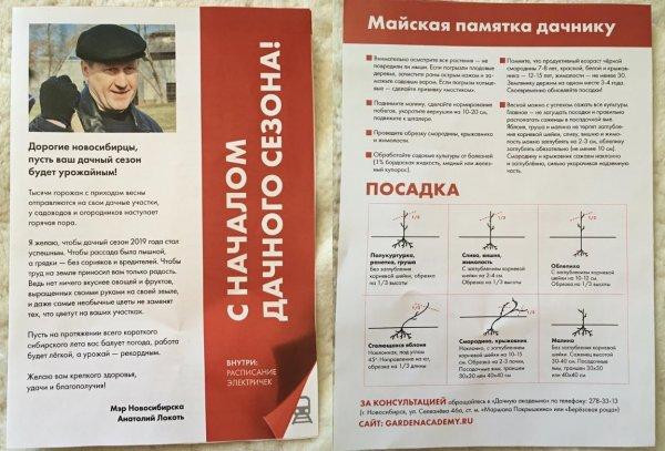 Локоть учит новосибирцев высаживать «полукуртурку»