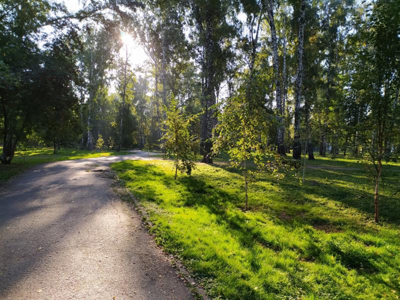 Бабье лето будет: синоптики рассказали, когда тепло вернется в Новосибирскую область