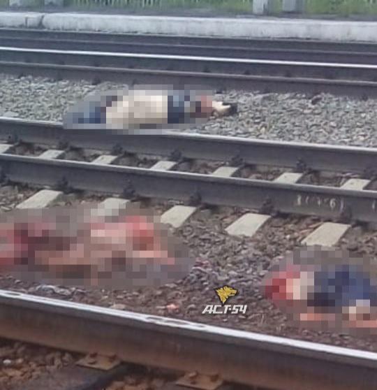 Следователи обнародовали причину смерти сибиряков на железнодорожных путях