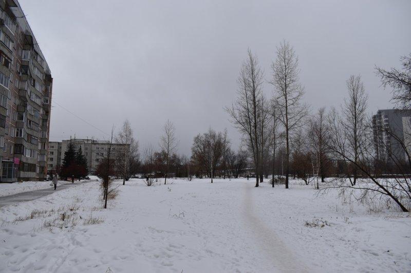Выводы прокуратуры подстегнули народную активность защитников сквера на Демакова