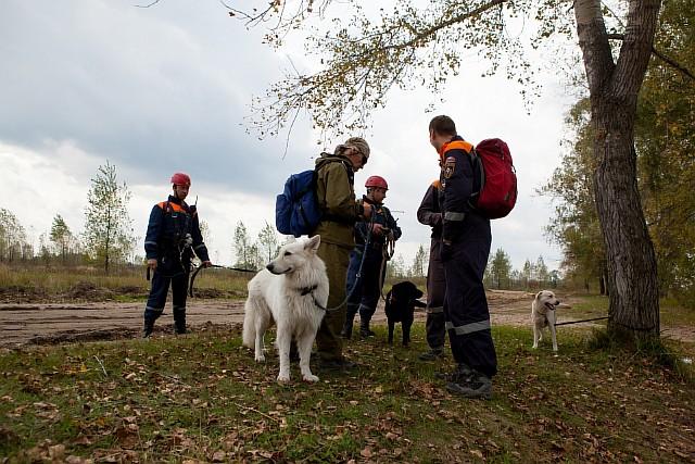 Четыре ребёнка потерялись в лесах Новосибирской области