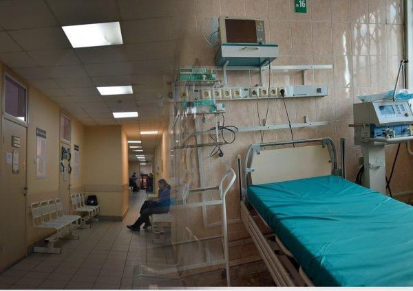 «Что после плато?»: Как коронавирус поведёт себя в Новосибирской области