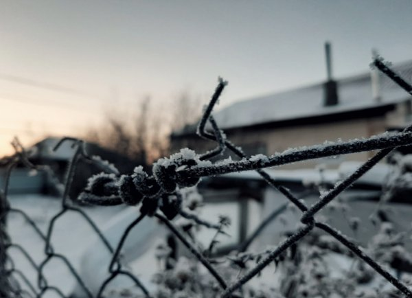 «Мороз и солнце»: в выходные новосибирцев ждет ясная погода и –25