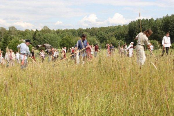 Новосибирская область увеличила экспорт сена