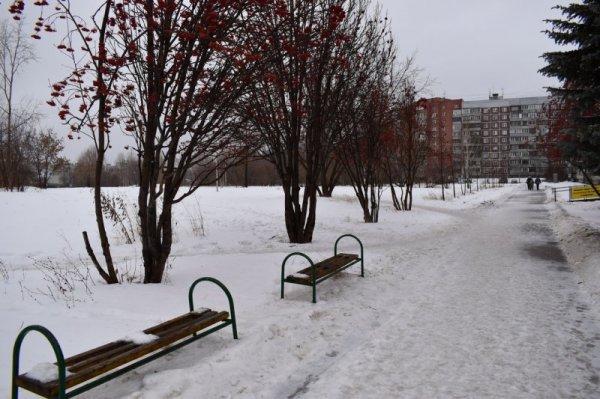 Новосибирцы подписывают петицию с требованием вернуть сквер на Демакова