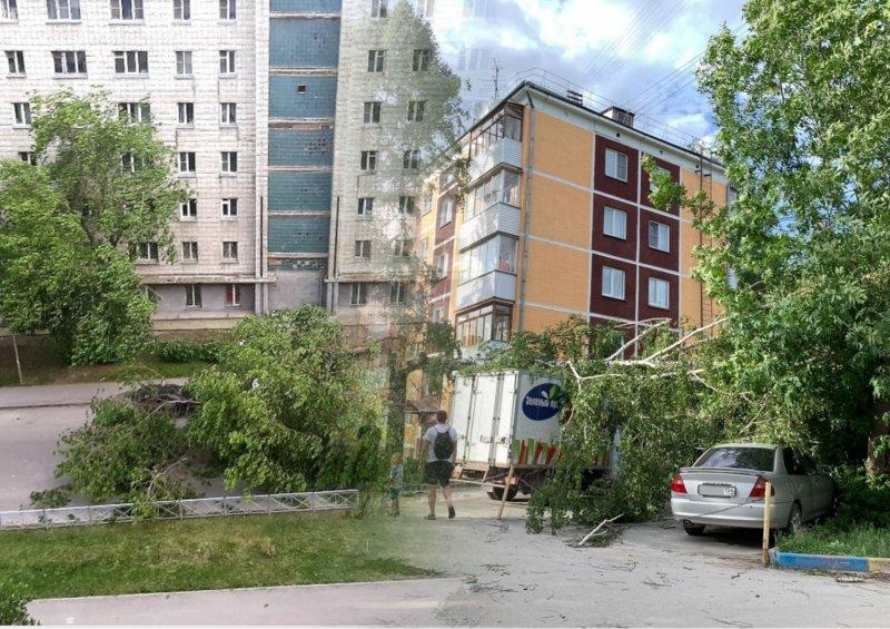 «Валит деревья и столбы»: последствия урагана в Новосибирске