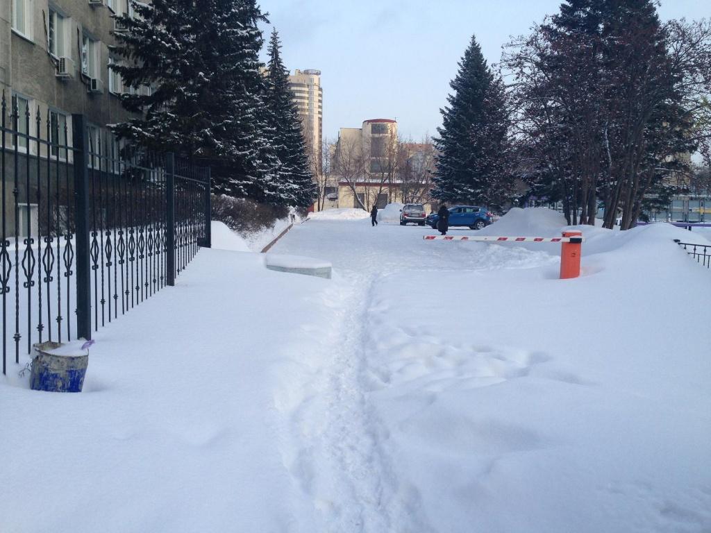знакомство снежный новосибирск фото свадьбу отличный вариант