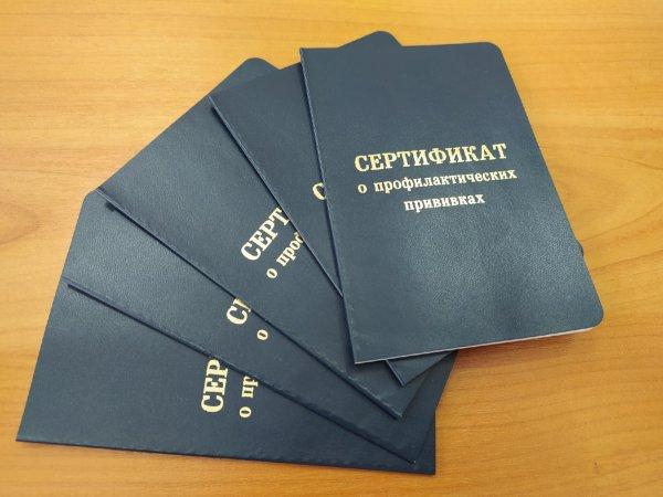 По результатам опроса треть россиян готовы привиться от коронавируса только вакциной Путина