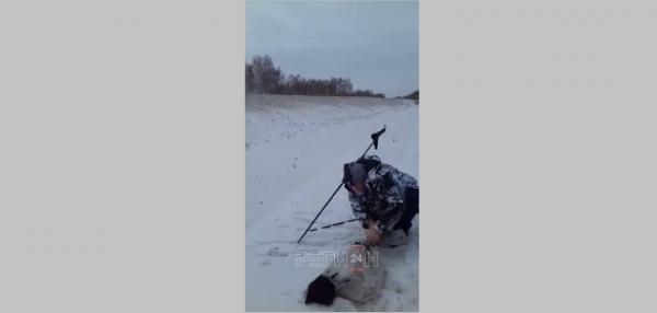 Новосибирцы возмущены спасением брошенной в мешке собаки