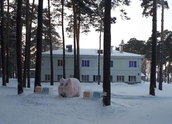 попросили санаторий обские зори в новосибирске фото мечты