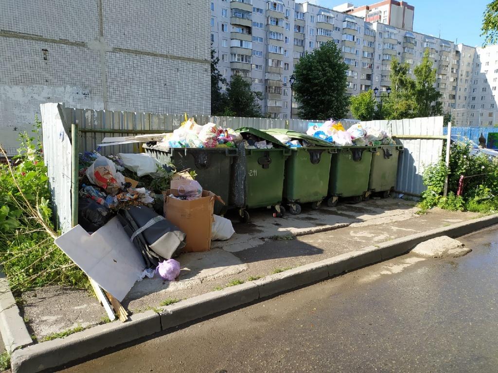 селезнева мусор.jpg