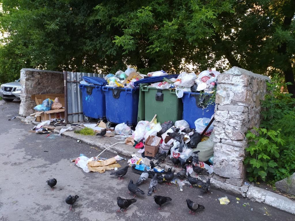 Ипподромск мусор.jpg