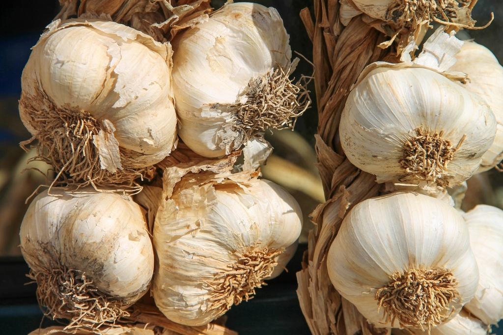 garlic-3747176_1920.jpg