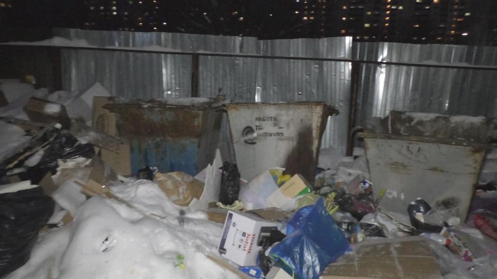 контейнер+мусор.jpg