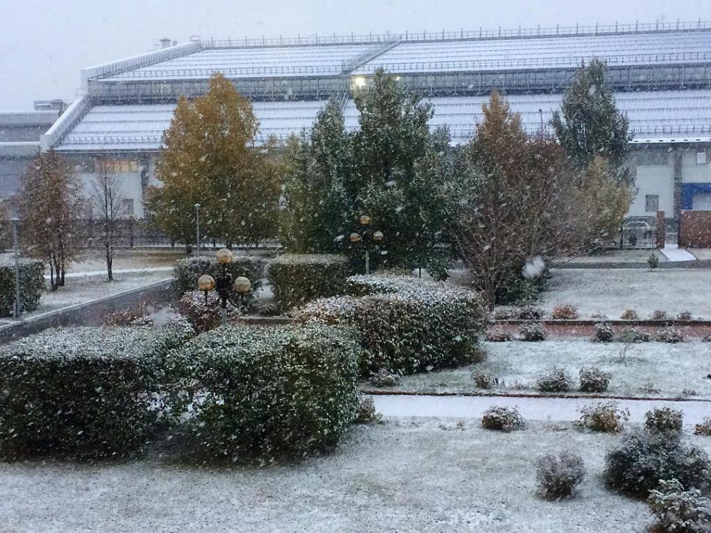 снег5.jpg