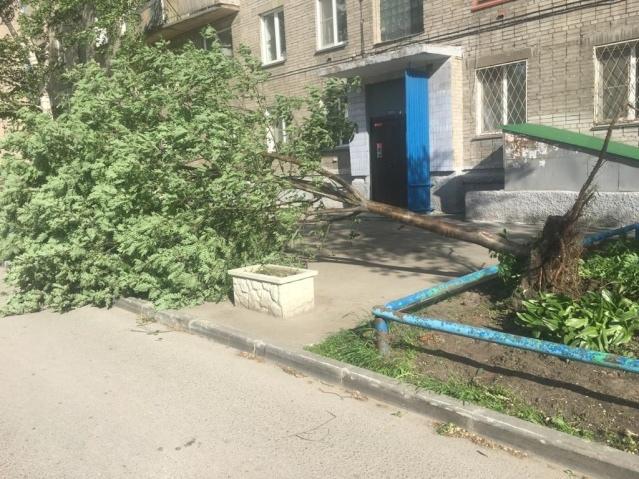 Новосибирск 3.jpg