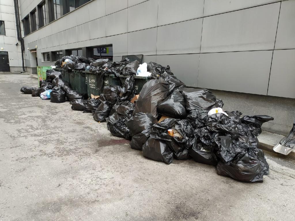 хилтон мусор.jpg