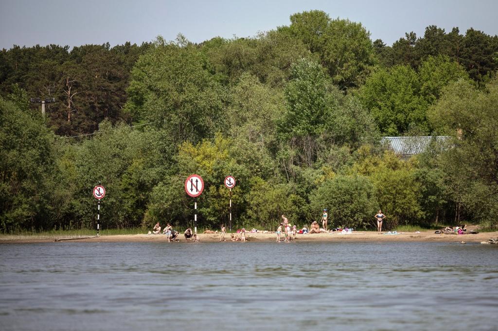 na-reke-ob-povyshen-risk-proisshestviy-iz-za-propuska-drevesiny_15901351671495884125.jpg